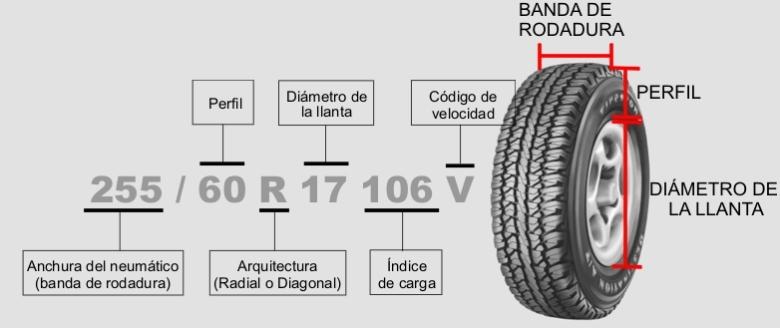 grafico medidas
